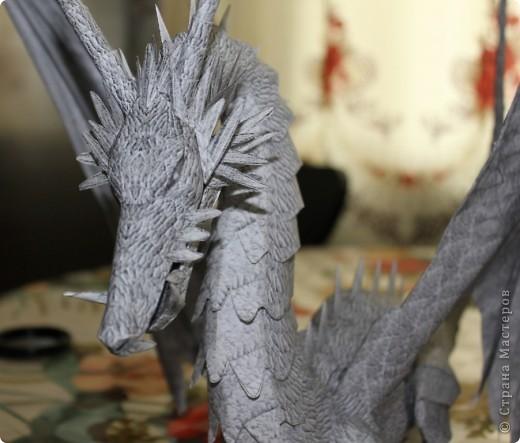 Драконы фото 15