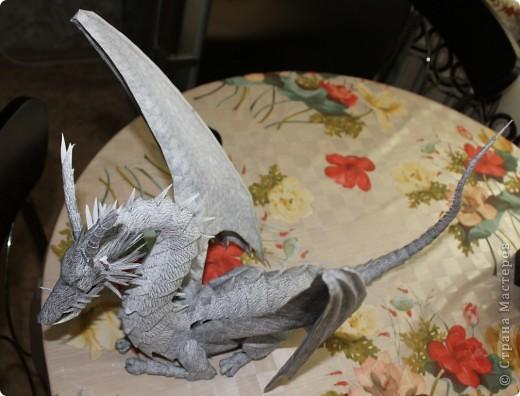 Драконы фото 17