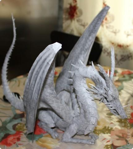 Драконы фото 21