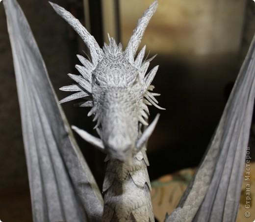 Драконы фото 22