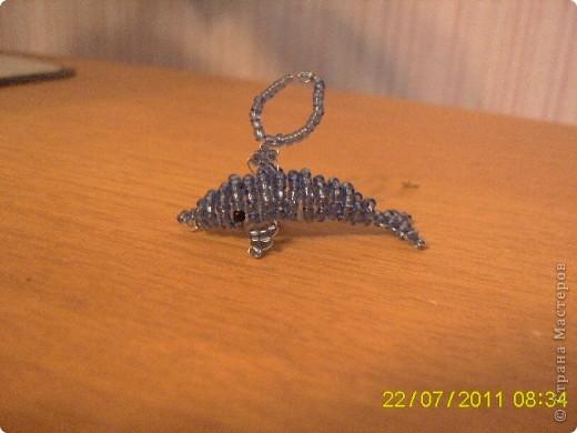 Крокодил. фото 3
