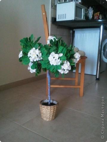 """Как-то я загорелась идеей слепить """"дерево-бонсай"""". Начала изучать материал и поняла, что Бонсай - это искусство выращивания карликовых деревьев. Мне очень нравятся деревья с белыми цветами и дурманящим запахом. Поправьте меня, кажется это Плюмерия... фото 6"""
