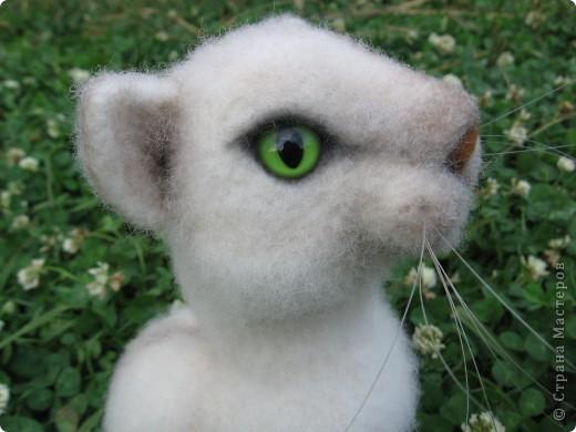 Феликс - кот эрудит, у компьютера сидит. Интеллектом обладает, всё на свете понимает. Рост 20 см. Шерсть, пластик. фото 5