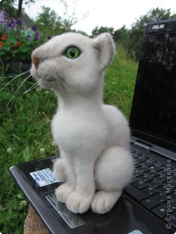 Феликс - кот эрудит, у компьютера сидит. Интеллектом обладает, всё на свете понимает. Рост 20 см. Шерсть, пластик. фото 3