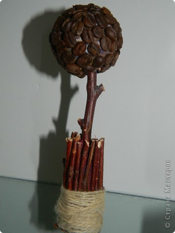 Кофейное дерево!!! фото 1
