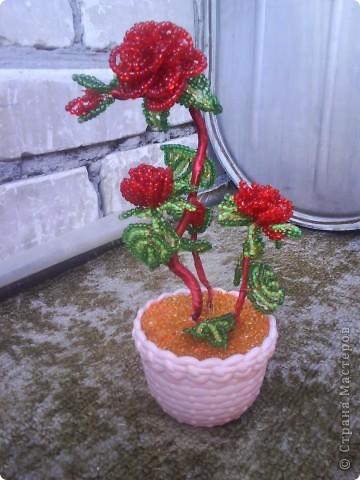 моей бабушке подарили розу из бисера. мне очень понравилось, вот и решила выложить фото сюда фото 1