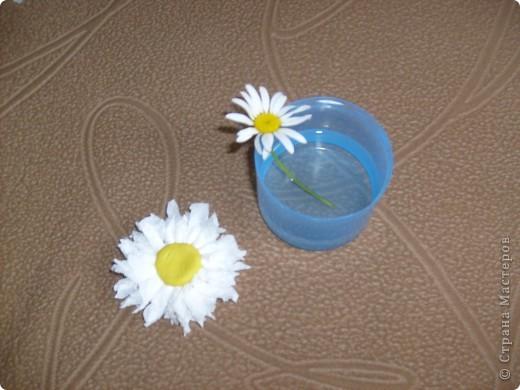 вот мои ромашки для всей семьи) фото 3
