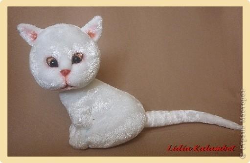 Белый котёнок. Мастер класс. фото 49
