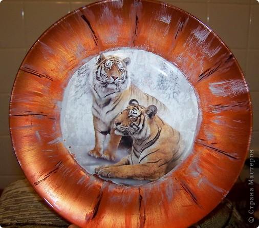 Тарелка Тигриная пара