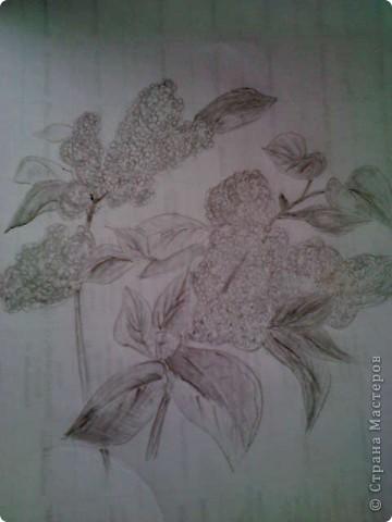 карандашом фото 8