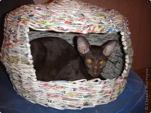 Мой первый опыт в плетении из газет - кошкин дом))) фото 1