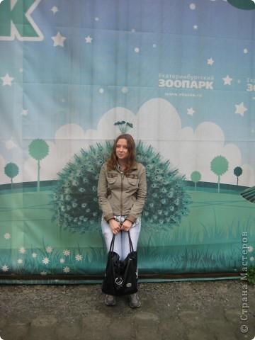Мои дети съездили в Екатеринбург и побывали в зоопарке. Привезли фотографии, чтобы порадовать меня. Не все удачные, но кое-что я выбрала. Это белый медведь. фото 26