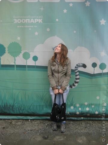 Мои дети съездили в Екатеринбург и побывали в зоопарке. Привезли фотографии, чтобы порадовать меня. Не все удачные, но кое-что я выбрала. Это белый медведь. фото 28