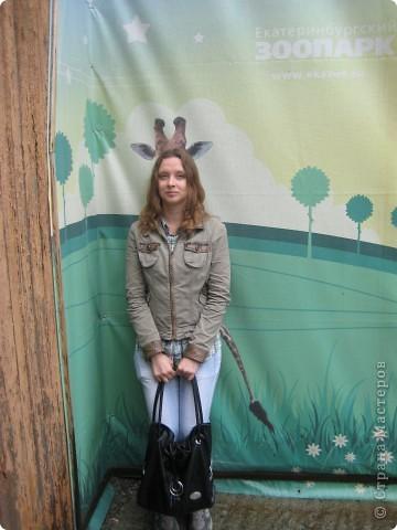 Мои дети съездили в Екатеринбург и побывали в зоопарке. Привезли фотографии, чтобы порадовать меня. Не все удачные, но кое-что я выбрала. Это белый медведь. фото 25