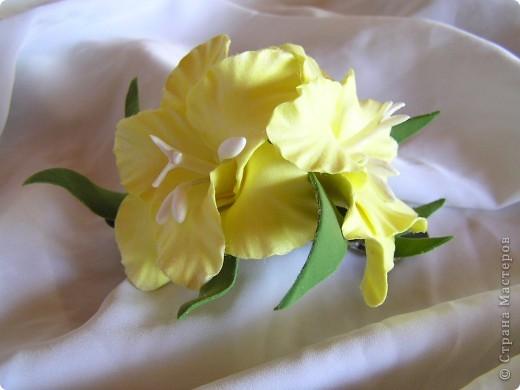 Два соцветия фото 1