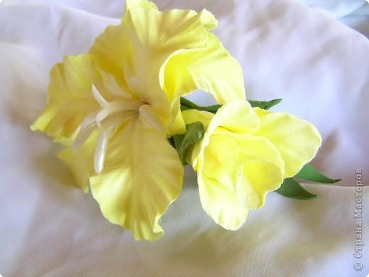 Два соцветия фото 3