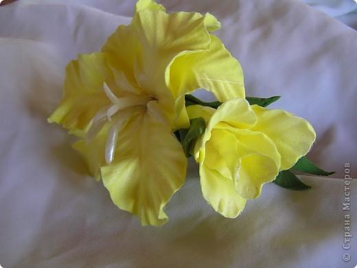 Два соцветия фото 5