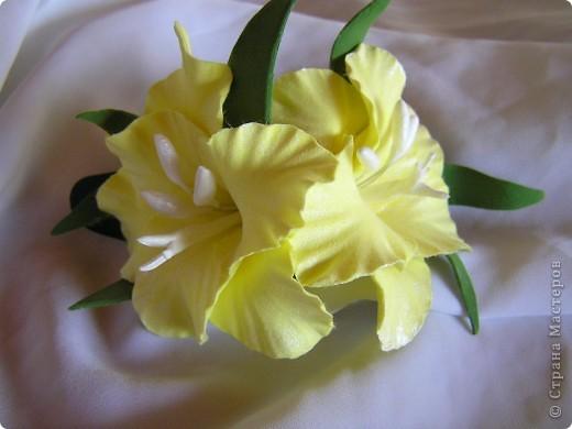 Два соцветия фото 2