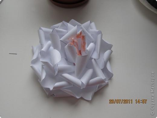 Еще один цветочек)) фото 2
