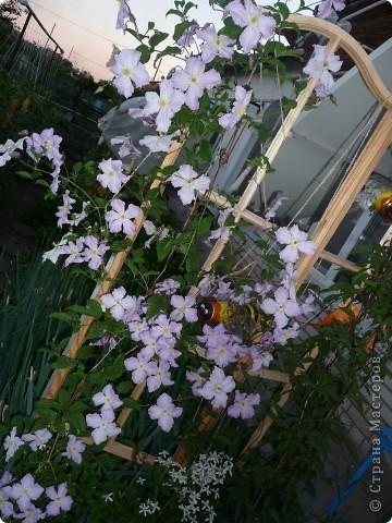 Украшаем сад.Часть 5 фото 4