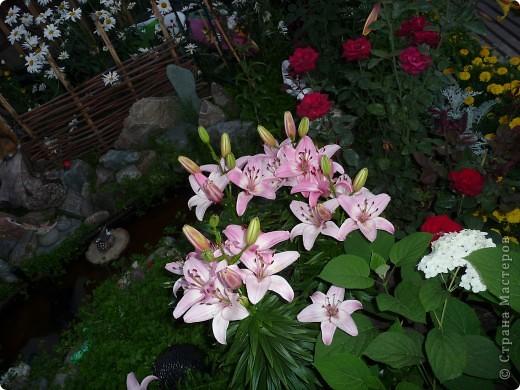Украшаем сад.Часть 5 фото 5