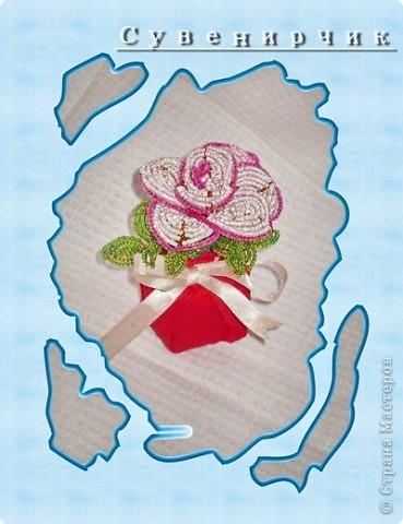 Розовая роза. фото 2