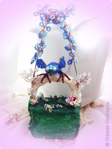 Синий ара. фото 1