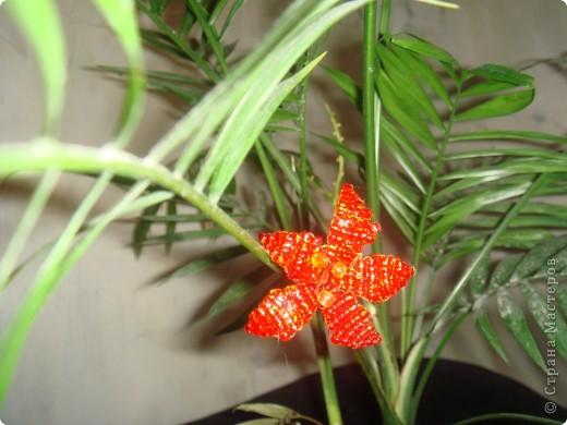 Цветок из бисера! фото 2