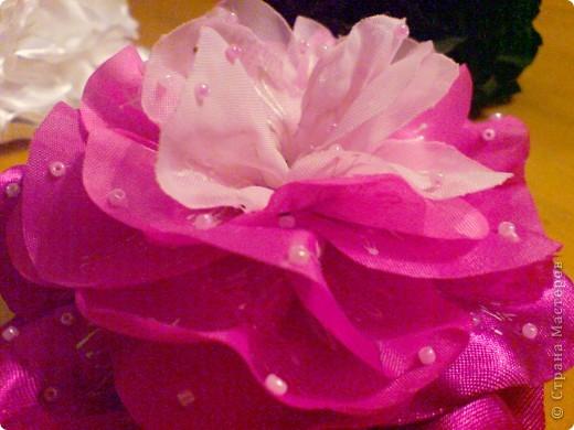 мой первый при первый цветочек фото 4