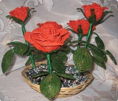 Розы.... фото 2