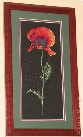 Набор Риолис, размер 40*30, частичная вышивка. фото 2