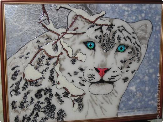 Снежный барс фото 1