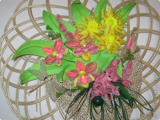 цветы фото 13