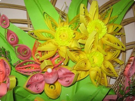 цветы фото 14