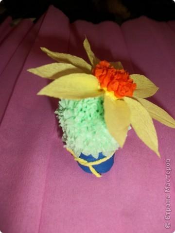 Эти кактусы были сделаны в подарок. № 1 - маме. фото 1