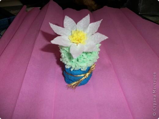 Эти кактусы были сделаны в подарок. № 1 - маме. фото 2