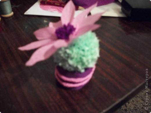 Эти кактусы были сделаны в подарок. № 1 - маме. фото 3