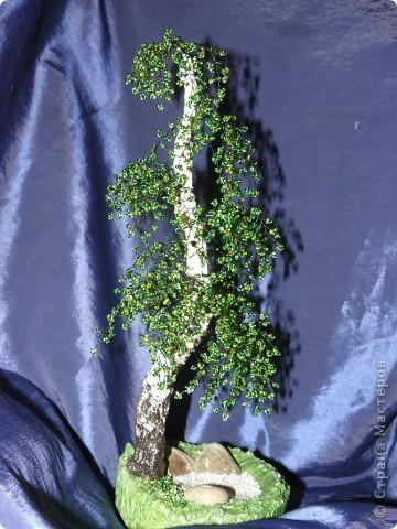 Моё первое дерево из бисера. Берёза. фото 1