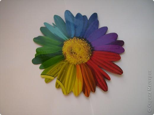 Честно признаюсь: эта ромашка была на папке для цветной бумаги. Я ее вырезала, серединку покрыла клеем с блестками...  фото 1