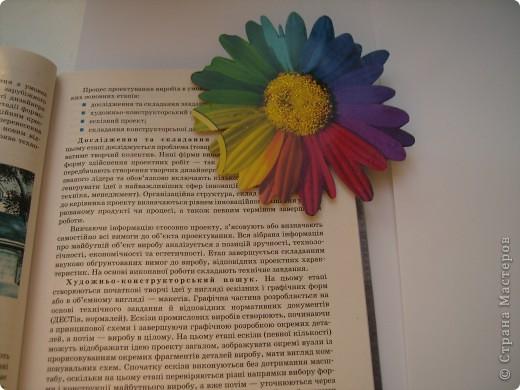 Честно признаюсь: эта ромашка была на папке для цветной бумаги. Я ее вырезала, серединку покрыла клеем с блестками...  фото 3