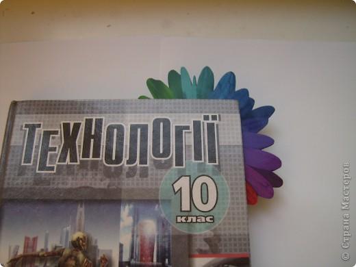 Честно признаюсь: эта ромашка была на папке для цветной бумаги. Я ее вырезала, серединку покрыла клеем с блестками...  фото 5
