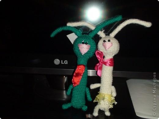 Вдохновителем для этик зайцев явилась Жанна С, надеюсь она не обидеться, что мы у нее стырили идею. Знакомьтесь это Марли и Ия, имена придумала после просмотра фильма Марли и я. Жанночки спасибо за вдохновение. фото 1