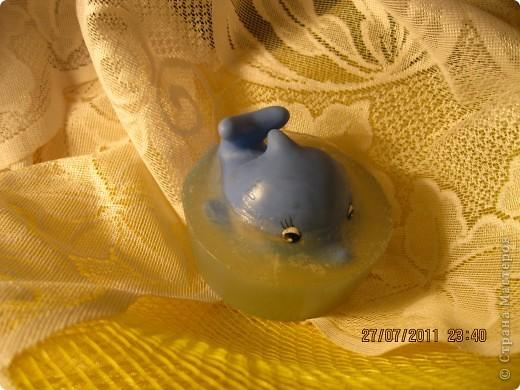 Дельфин в мыле.