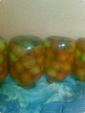 Готовые помидорчики фото 5