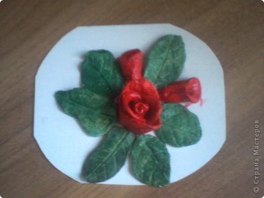 роза в окружении листочков и 2 бутончиков рядом фото 1