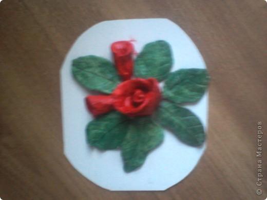 роза в окружении листочков и 2 бутончиков рядом фото 2