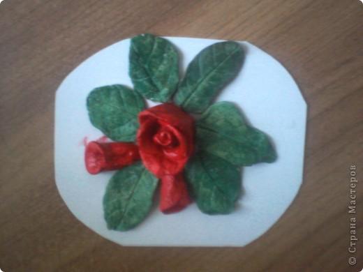 роза в окружении листочков и 2 бутончиков рядом фото 3