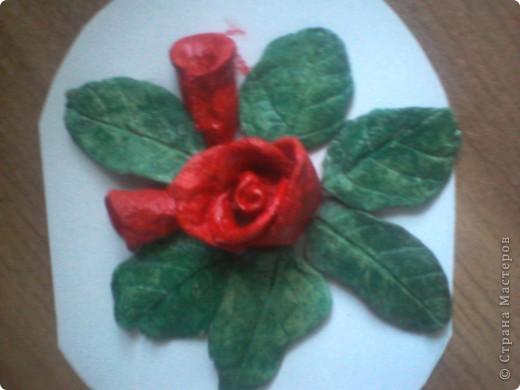 роза в окружении листочков и 2 бутончиков рядом фото 4