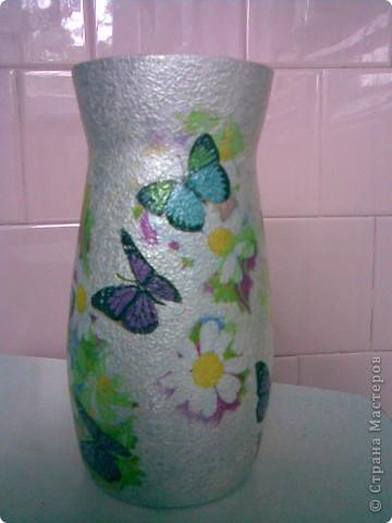 бабочки летают фото 3