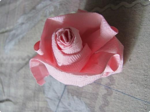 Розовое деревце фото 7